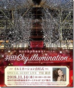 hanedaillumination2018